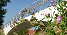 Projets euralens - Les jardins du louvre loos en gohelle ...